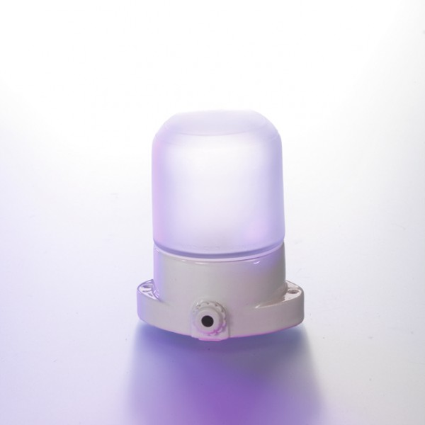 Leuchte für Sauna mit mattierter Glaskuppel